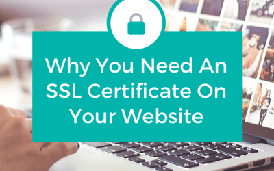 How Important is an SSL Certificate?